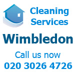 Professional Domestic Cleaning Services in Wimbedon