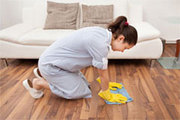 DustToShine – Domestic House Cleaning Company London