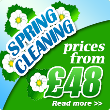 Spring cleaners Hampstead