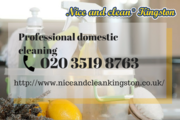 Regular domestic cleaning Kingston