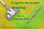 Carpet cleaners Kingston