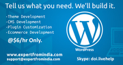 Hire a top WordPress developers now