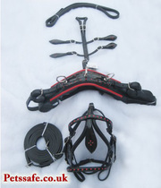 LEATHER MINIATURE DRIVING HARNESS BLACK WITH RED COLOR