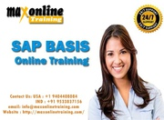 SAP BASIS ONLINE TRAINING FROM PROFESSIONALS