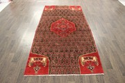 Buy Traditional Persian Koliaie Rug 8X3.9