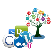 Are you Looking Company to  Provide SEO ,  Digital Marketing Services?