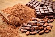 Buy Organic Raw Cocao Powder