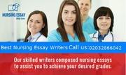 Nursing Essay Writer