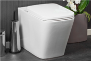 Shop from a huge selection of Two-in-one Family Toilet Seat
