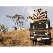 Safari Tours Africa