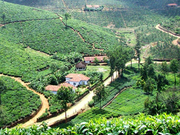 Hills stations in the God's own country