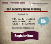 SAP Security Online Training London