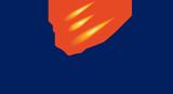 Bespoke Software Development,  Custom Software Development Services