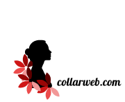 Fashion Designer product supplier