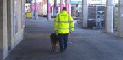 24h Mobile Dog Patrols London