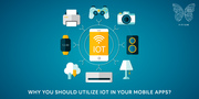 How Fifium Capitalizes The IoT In Mobile Application Development?