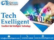 Tech Exelligent Worlds renowned Digital Marketing Company