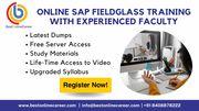 Sap fieldglass online training | fieldglass ariba integration